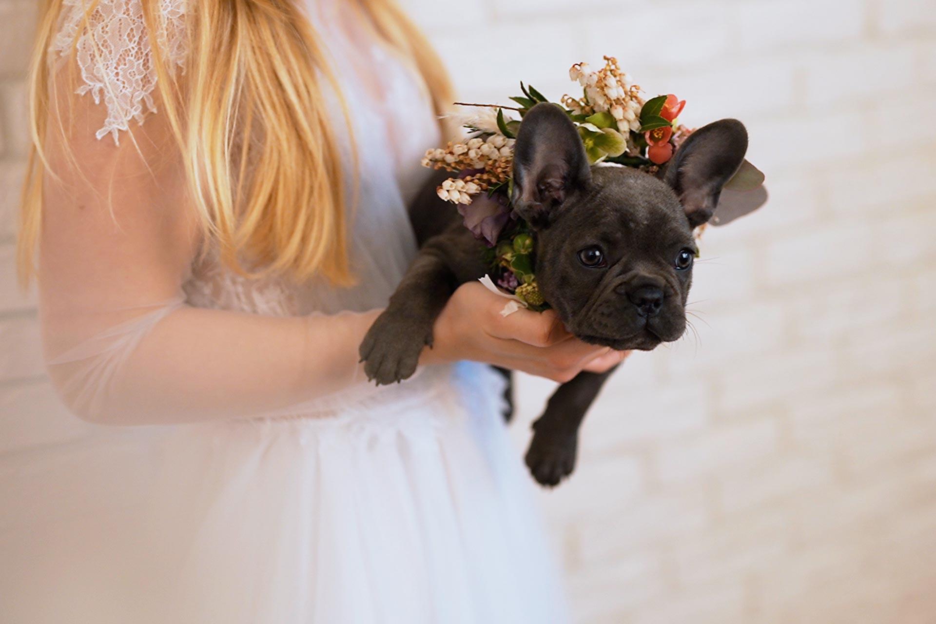 aranjamente-florale-nunta-coronita