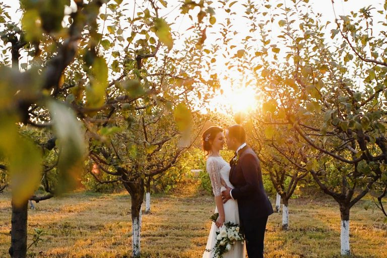 locatie-nunta-casa-vlasia-romania